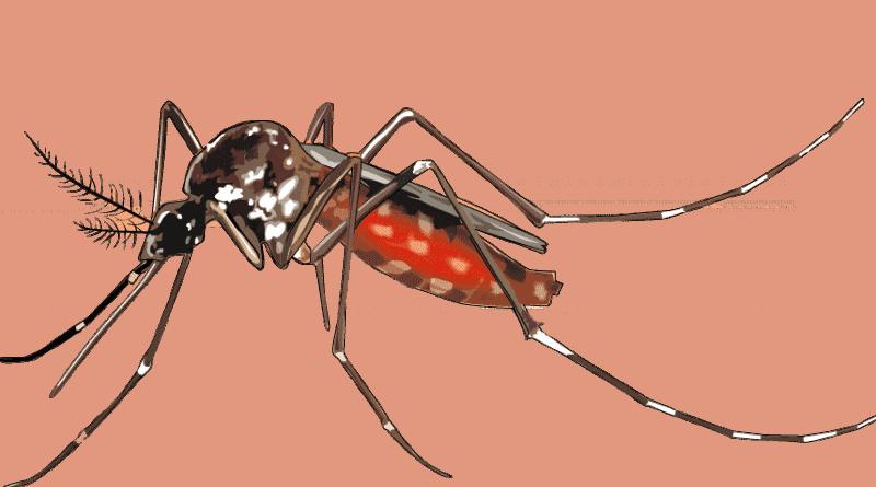 sivrisinek-ilaclama